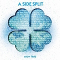 A SIDE SPLIT Vol,3 ~snow field~