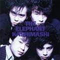 THE ELEPHANT KASHIMASHI
