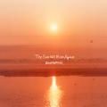 The Sun Will Rise Again