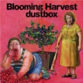 Blooming Harvest