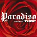 Paradiso ~愛の迷宮~