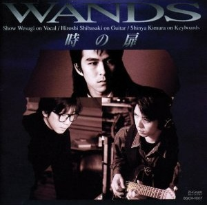WANDSの画像 p1_34